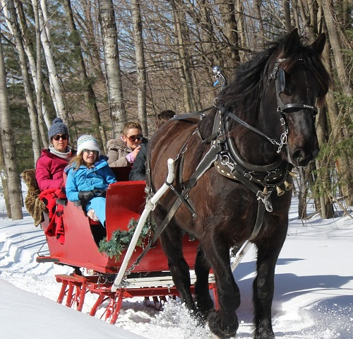 Sleigh ride small size