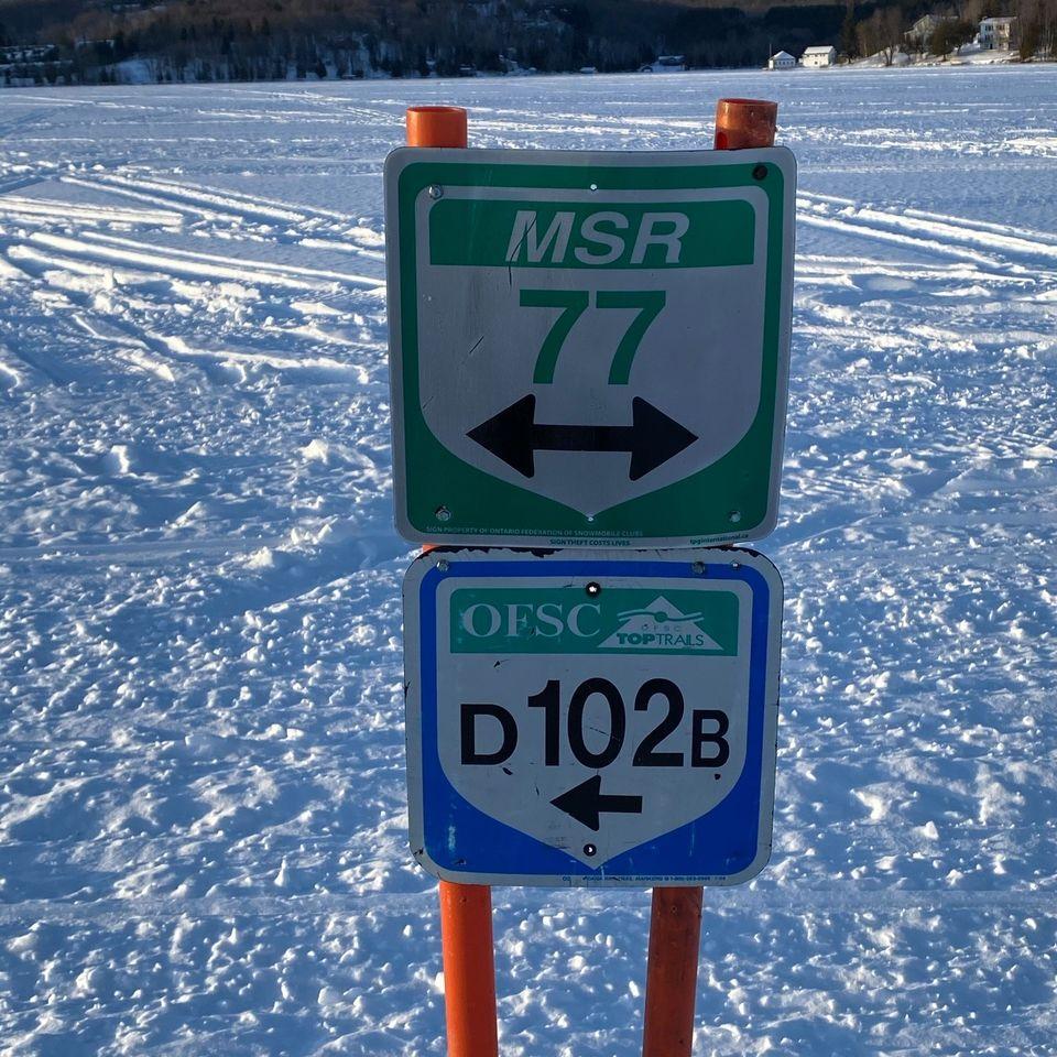 ski do signs