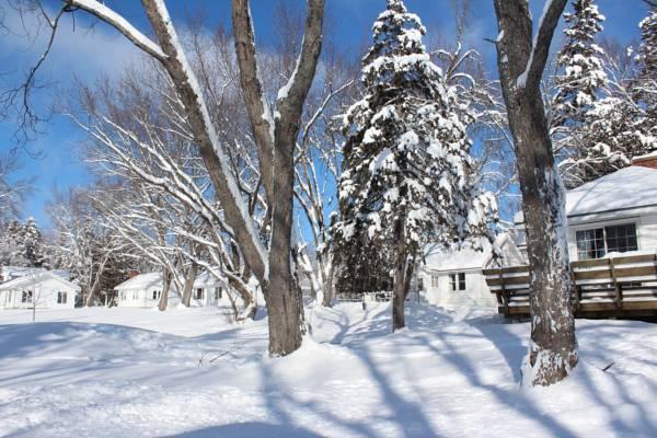 main tally ho winter photo